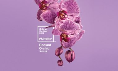 PANTONE Colour Of The Year 2014 18-3224