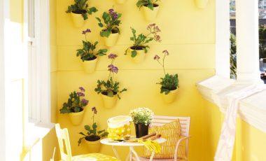 Roodebloem Studios Balcony Painted By Plascon Photographic Studio
